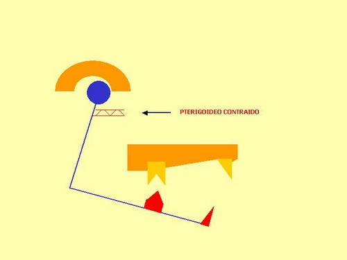 fig-18_redimensionar.jpg