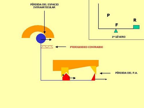 fig-20_redimensionar.jpg